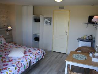 La Perle du Lot: Luxe Bed & Breakfast (met gratis sauna & jacuzzi) - Castelnau-Montratier vacation rentals