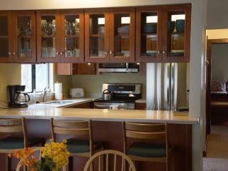 Kirschner Pet Friendly Tahoe Rental Home - Agate Bay vacation rentals