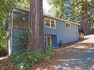 Wine Country Getaway - Guerneville vacation rentals