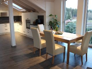 Nice Condo with Internet Access and Satellite Or Cable TV - Ofterschwang vacation rentals