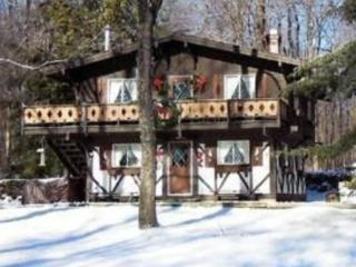 Elk Mountain Ski House..1 mile to base of mountain - Union Dale vacation rentals