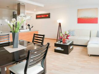 Lux appartment in Polanco! - Mexico City vacation rentals