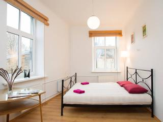 Delightful 1 bedroom apartment - Riga vacation rentals