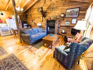 A Cabin you can call HOME!/Panther Lodge - Cherokee vacation rentals