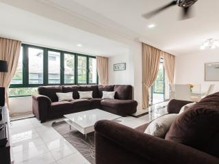 Nice Homely Apartment for Rent - 202DC Condominium - Ampang vacation rentals