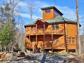 3 bedroom Cabin with Deck in Cosby - Cosby vacation rentals