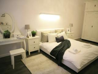 Fancy 3.5 Bedroom Apartment with 2.5 Bathrooms - Krakow vacation rentals