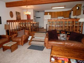 Nice 3 bedroom Condo in Fraser - Fraser vacation rentals