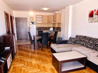 Holiday apartment - Saint Petersburg vacation rentals