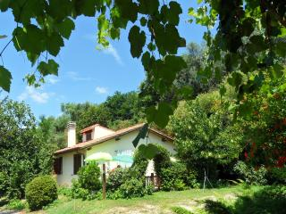 2 bedroom House with Parking Space in Bolsena - Bolsena vacation rentals