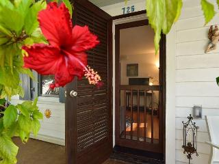 Solaris Cottage: Historic Old Town Lane, 14 minute walk to Beach! - Key West vacation rentals