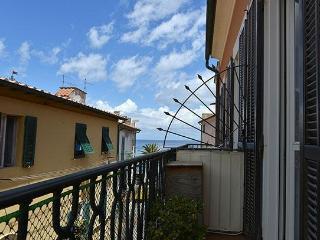 Adorable Marciana Marina vacation Apartment with Television - Marciana Marina vacation rentals