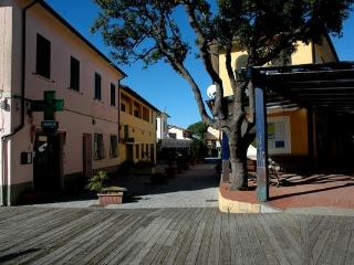 Spacious Condo with Television and Grill - Procchio vacation rentals