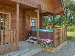 Perfect House with Internet Access and Wireless Internet - Gartmore vacation rentals