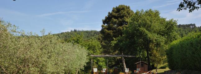15x5mts swimming pool - fontanella - Monte San Savino - rentals