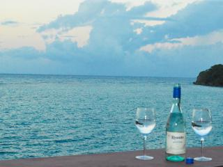 Autumn Special, Oceanfront villa with Chef!! - Ocho Rios vacation rentals