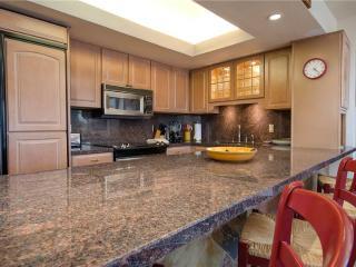 Bronze Tree Condominiums - BT207 - Steamboat Springs vacation rentals