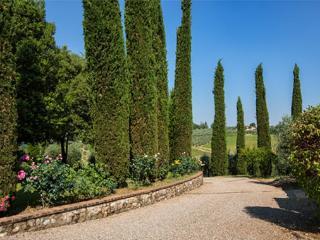 diana - Siena vacation rentals