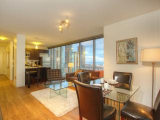Modern high rise with amazing view - Chicago vacation rentals
