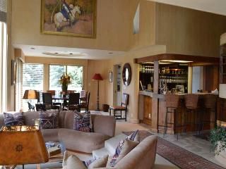 Big Wells Road Home 202 - Sun Valley vacation rentals