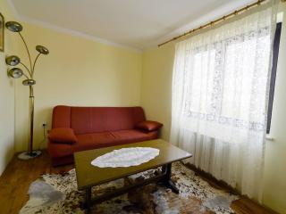 Nice Condo with Internet Access and A/C - Novigrad vacation rentals