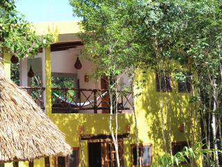 Panoramic jungle Jaguar Suite near Tulum - Macario Gomez vacation rentals
