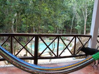 Jungle studio Jaguar on private property in Macario Gomez near Tulum - Macario Gomez vacation rentals