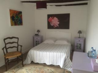 1 bedroom Private room with Internet Access in Lanvallay - Lanvallay vacation rentals