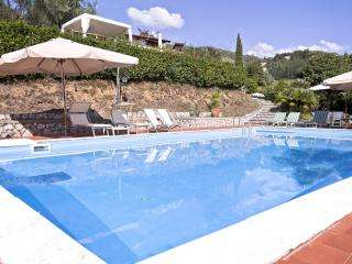 I Limoni, apartment in amazing villa with Pool - Camaiore vacation rentals