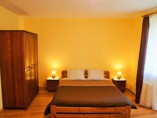 Apartment in the heart of old Krakow - Krakow vacation rentals