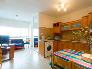 Nice 1 bedroom Ra'anana Condo with Internet Access - Ra'anana vacation rentals