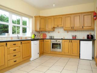 Beautiful House with Dishwasher and Stove - Dingle vacation rentals