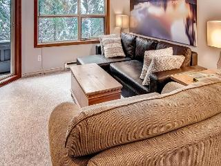 Aspens #115, 1 Bdrm, Ski-in Ski-out, Serene Forest View, Free Wifi - Whistler vacation rentals