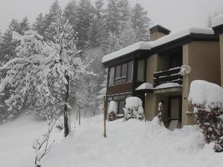 Swiss Alps Duplex Ski Chalet/Apartment - Alpe des Chaux vacation rentals