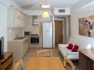 Lovely 2 Br, stylish, close to Emek Refaim - Jerusalem vacation rentals