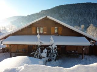Nice Ski chalet with Internet Access and Dishwasher - Ventron vacation rentals