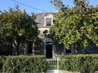 Loire Valley Elegant Merchant's House, Rille - Rille vacation rentals