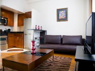 CO12G Luxury 5 Start Condo in Upper West Side - New York City vacation rentals