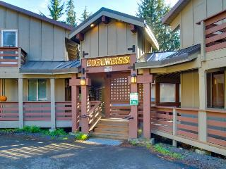 Comfortable, cabin-style condo, near skiing & attractions - dogs welcome! - Government Camp vacation rentals