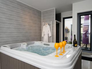 Adresse tendance en Champagne  Luxe&Spa - Épernay vacation rentals