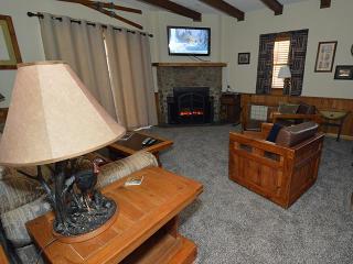 Perfect 2 bedroom House in Snowshoe - Snowshoe vacation rentals