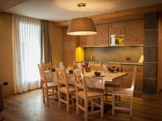 Charming 3 bedroom Bormio Condo with Internet Access - Bormio vacation rentals