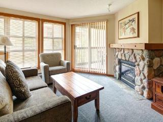 Panorama Upper Village Ski Tip & Tamarack Beautiful 2 Bed Condo - Panorama vacation rentals