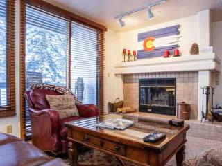 Townsend Place Condo, Walk to Beaver Creek Village, Ski In/Ski Out, YR Hot Tub, Convenient Location! - Beaver Creek vacation rentals
