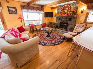 Cozy 3 bedroom House in Waynesville - Waynesville vacation rentals