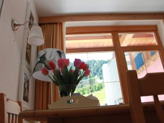 Apartment Gurgl -  direkt am Lift und Piste - Obergurgl vacation rentals
