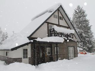 Hakuba Powder Cottage Alpine - Hakuba-mura vacation rentals