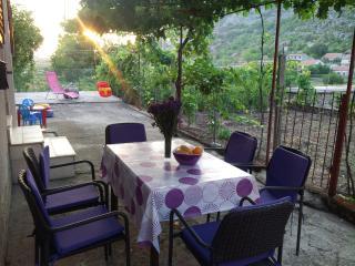 Holiday apartman IVONA - Dubrovnik vacation rentals