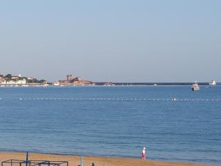 bord de plage,haut gamme, calme,proche commerces - Saint-Jean-de-Luz vacation rentals