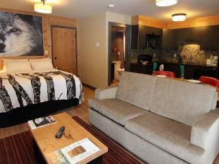 Banff Rocky Mountain Resort 1 bedroom 1 bathroom studio - Banff vacation rentals